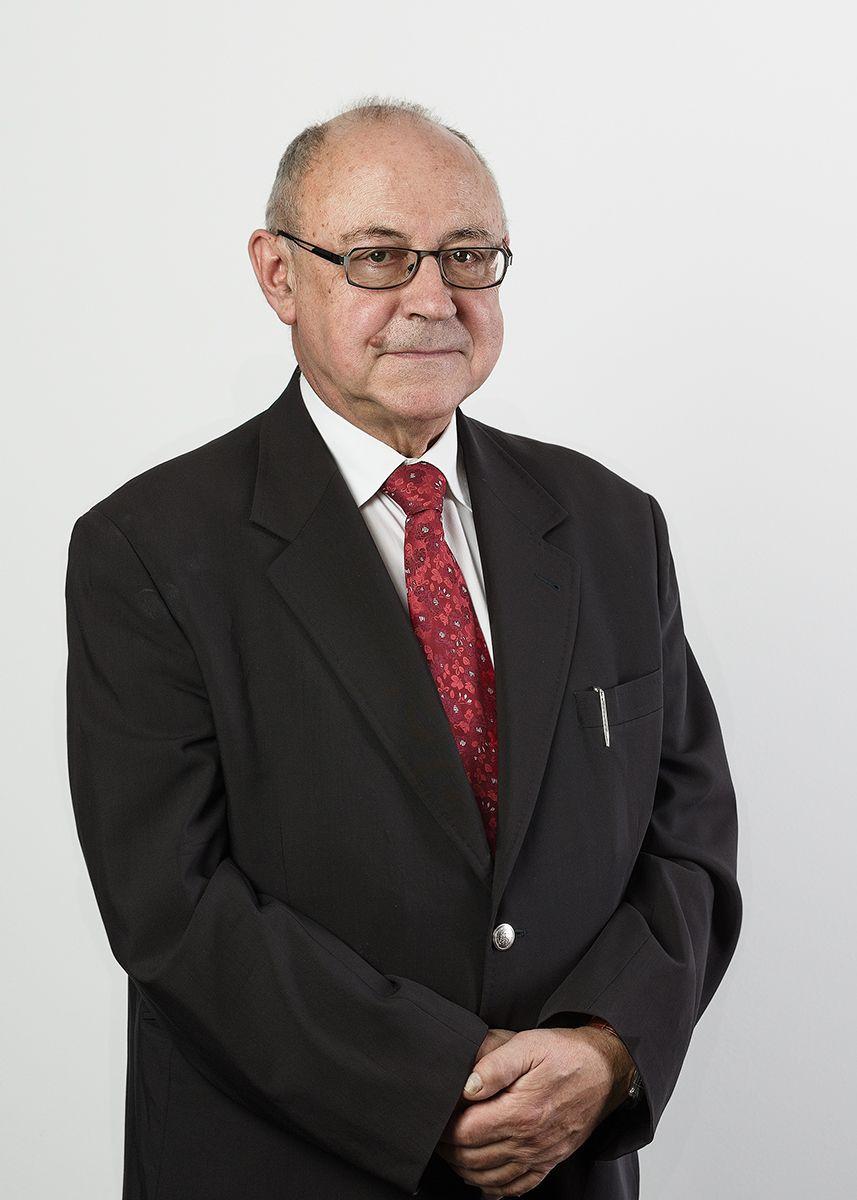 Prof. dr hab. Marek Lubelski